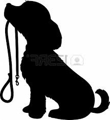 puppy holding leash imagesCAC2Z7Q2